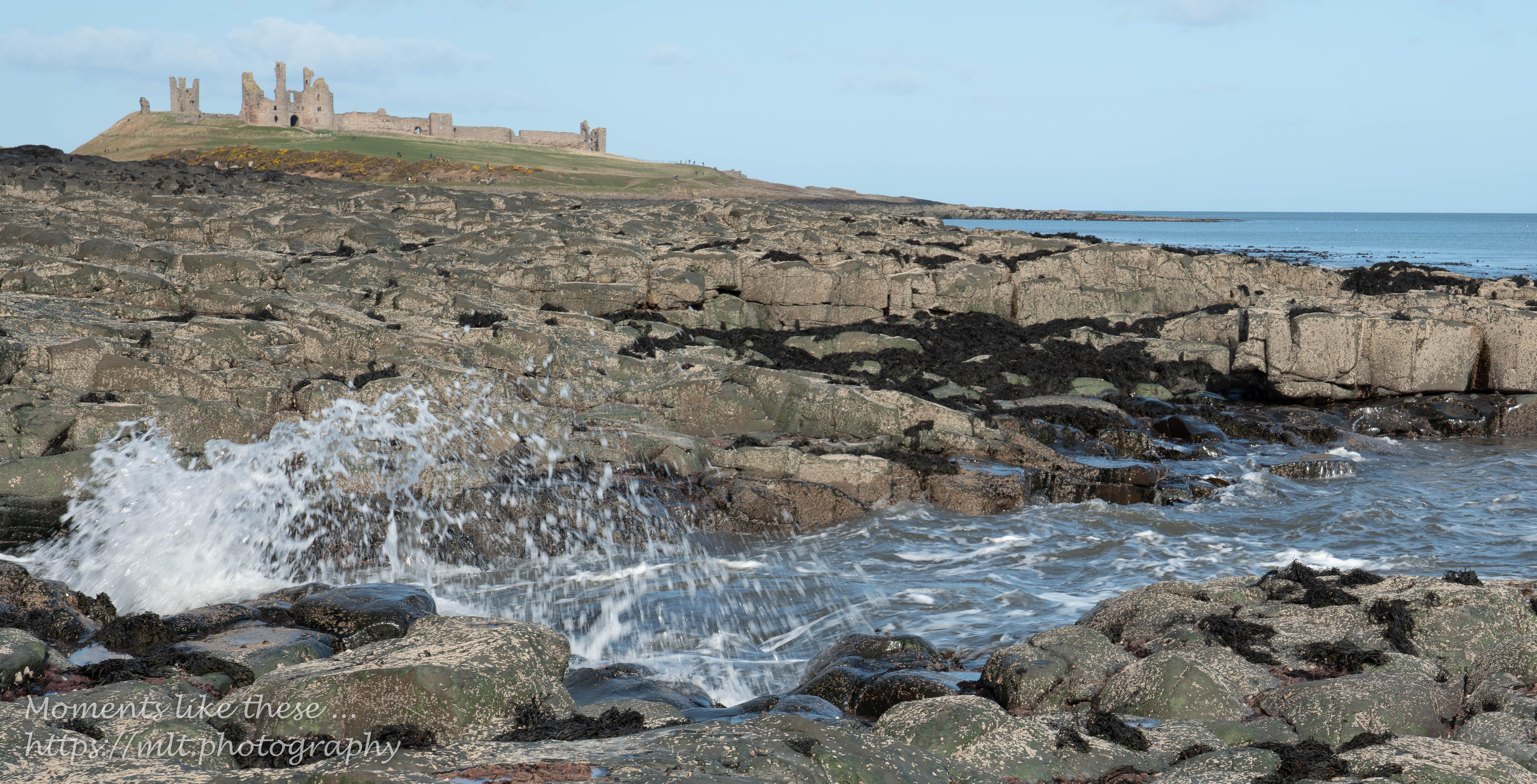 Looking north towards Dunstanburgh