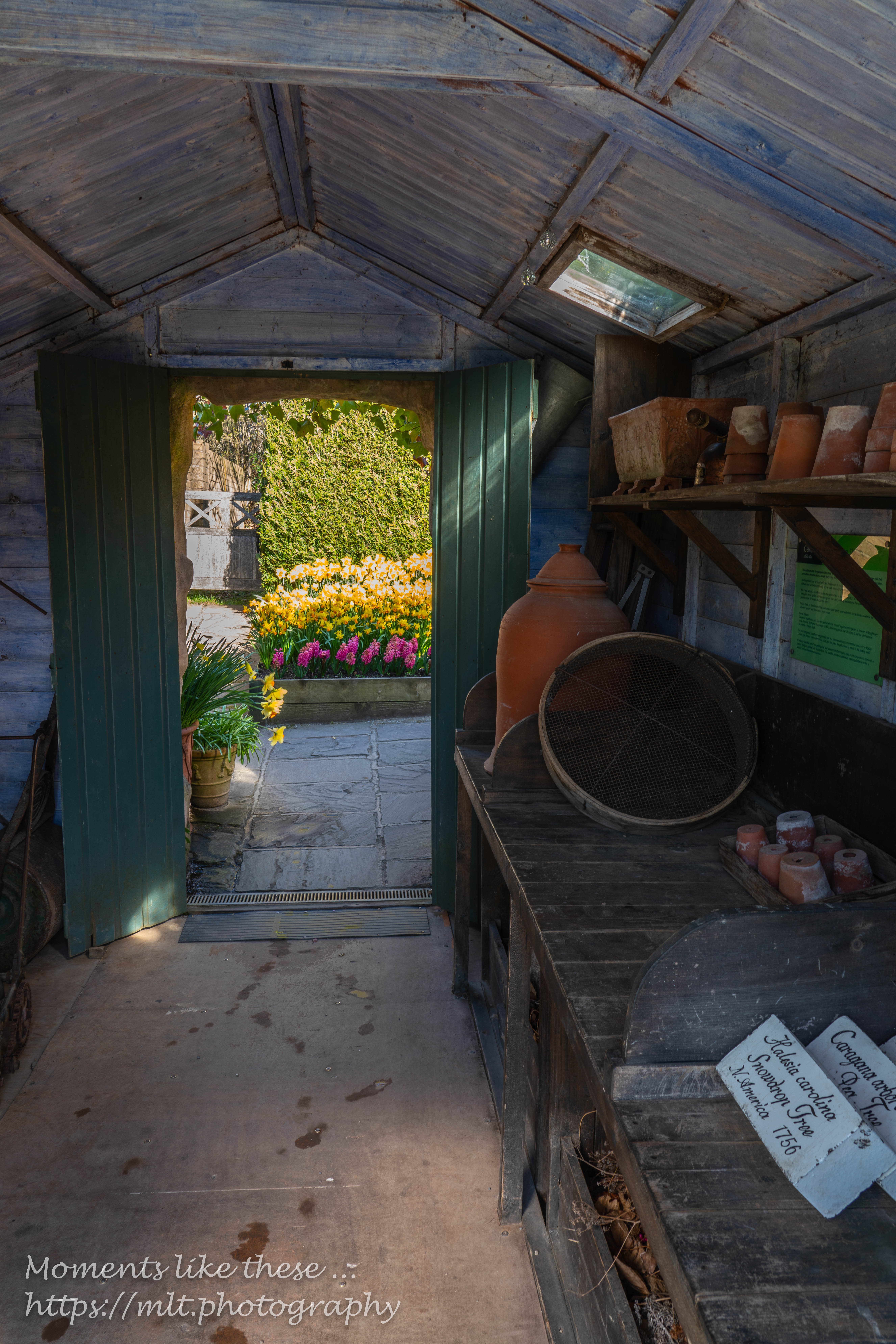 The Poitting Shed