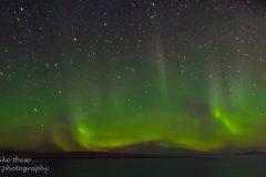 The Northern Lights south of Rørvik