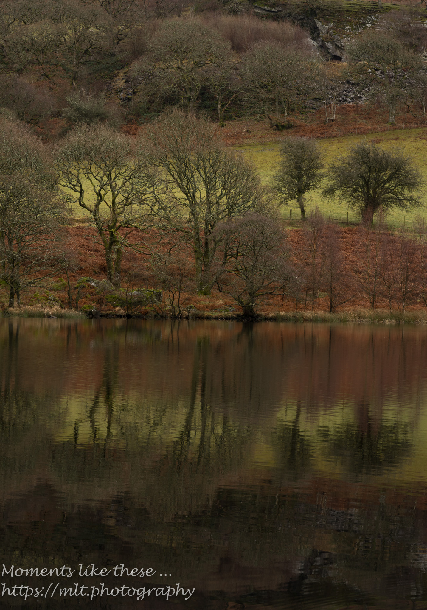 Dolymynach, Elan Valley