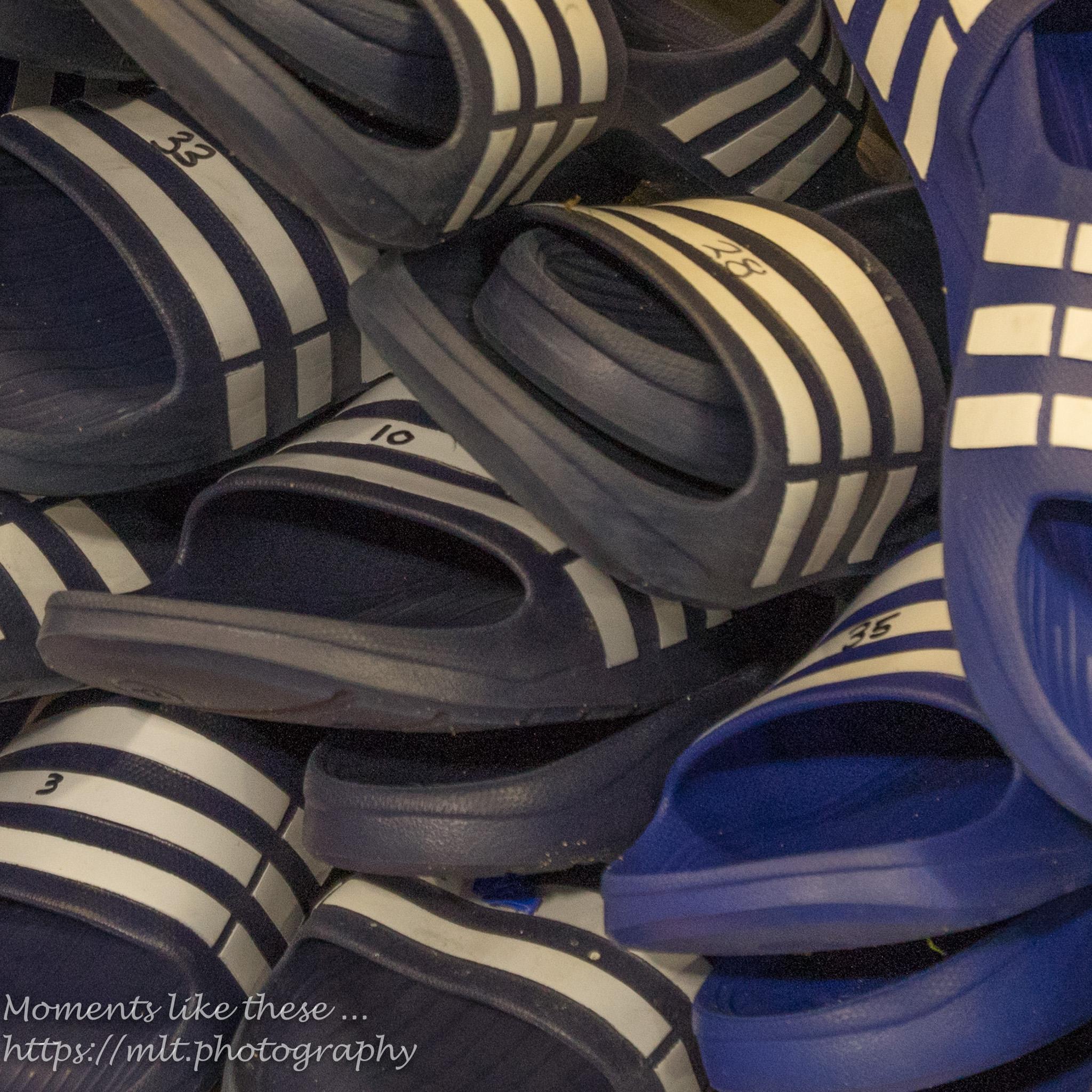 Bluebird slippers