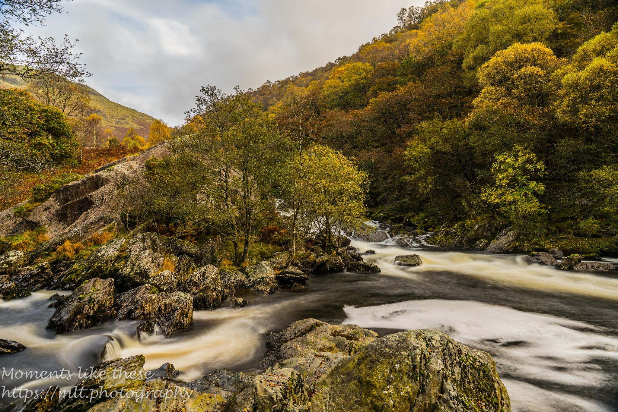 Afon Doethie meets the Afon Tywi near Dinas Rock