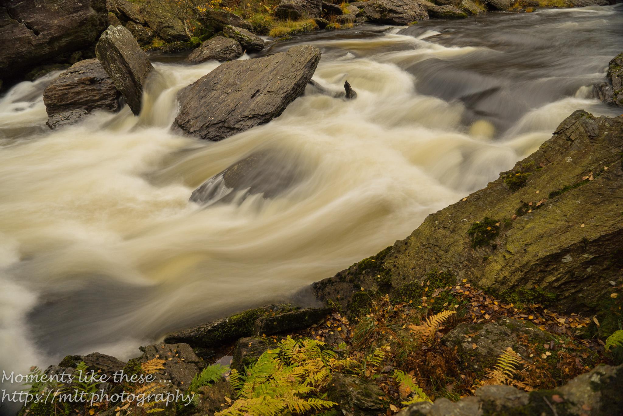 Afon Tywi at Dinas Rock