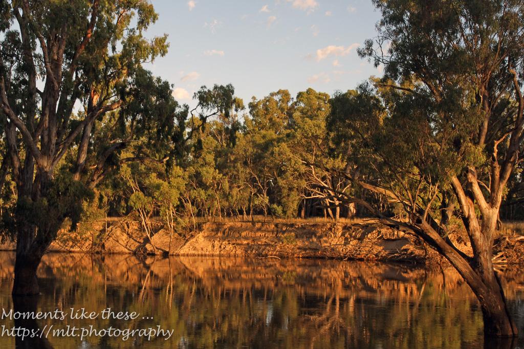Edward River, Deniliquin