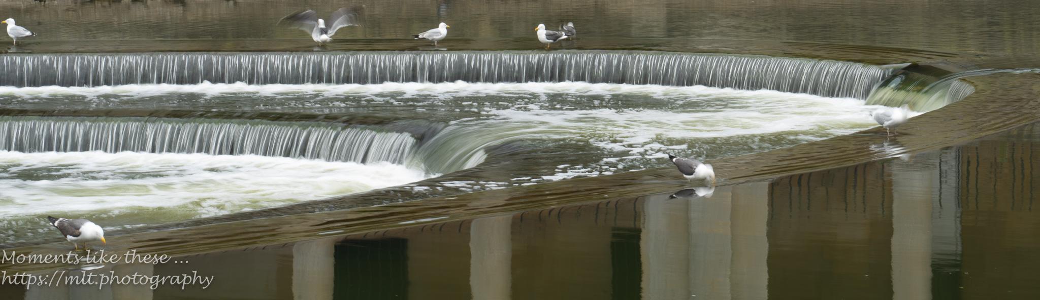 Pulteney wier - Bath
